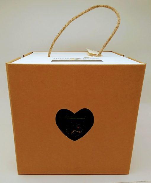 caja regalo lampara